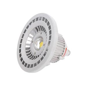 BAD808-LEDbob电竞竞猜投光灯