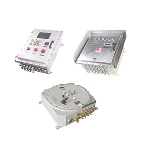 BXK系列防爆控制箱(ⅡB、ⅡC,戶內、戶外)